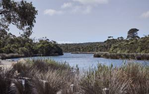 Anglesea River near Japara Anglesea aged care home
