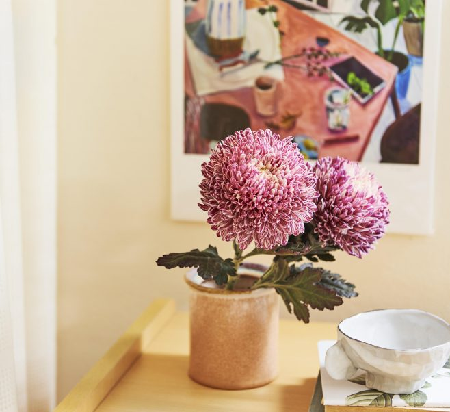 Stunning pink flowers in bedside vase at Japara Bayview Gardens aged care home