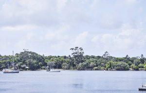 Panoramic shot of parkland on edge of Noosa River near Japara Noosa aged care home
