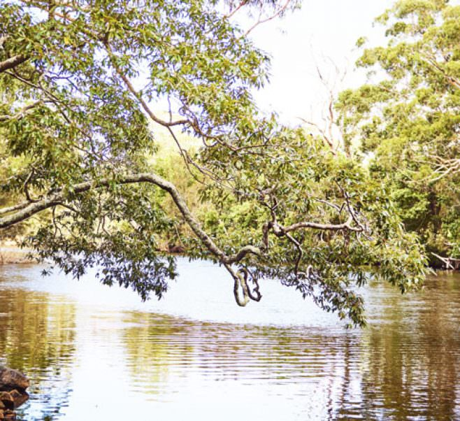 Wyong River near Japara Wyong Aged Care Home