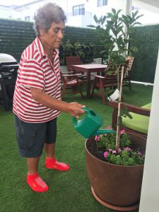 A South West Rocks resident watering a plant
