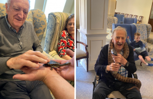Left: Man strokes terrapin, Right: Old man sitting with large snake around his shoulders