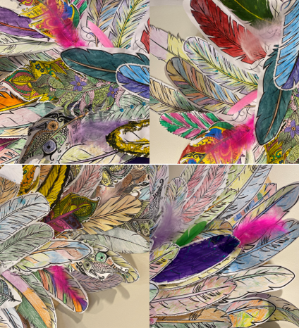 Close up images of the feathers