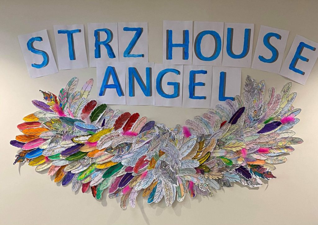 Angel wings mounted on a wall